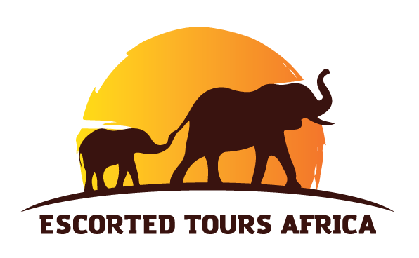 escorted tours africa